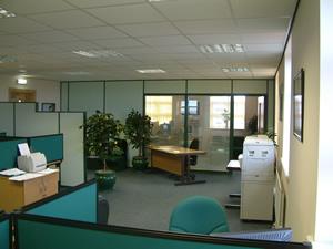 Escritório verde